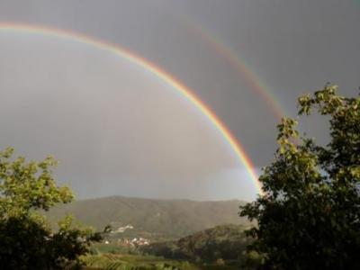 Regenbogen über dem Kamptal