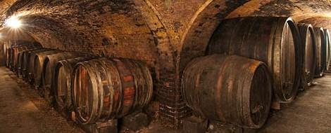 Holfäser im Weinkeller